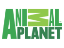 Animal Planet Online live