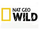 Nat Geo Wild Online live